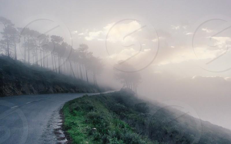 Misty Mountain Road photo