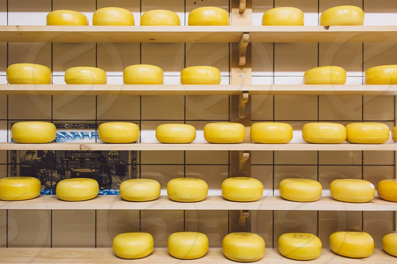 Dutch cheese photo