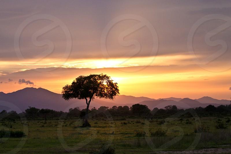 Tanzanian Sunset: Mikumi National Park photo