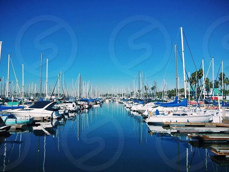 Reflection in the Marina photo