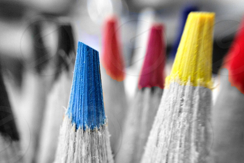white and yellow color pencil photo