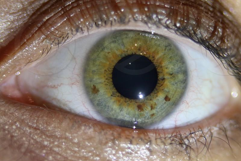 Macroeye macrocloseupcircleblue eyeeyeballvisionsight photo
