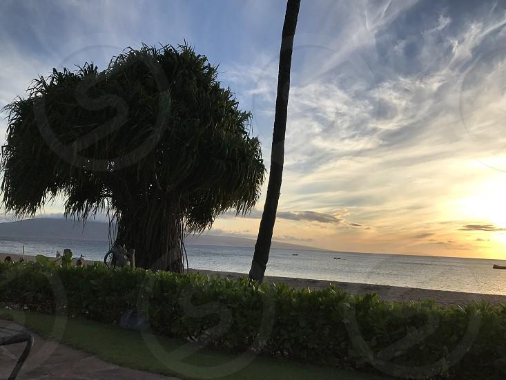 Maui sunset in summer  photo