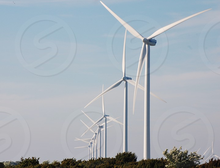row of white wind turbines over green trees against light blue and white cloudy sky photo