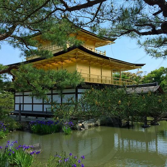 The golden temple near Kyoto Japan.  photo