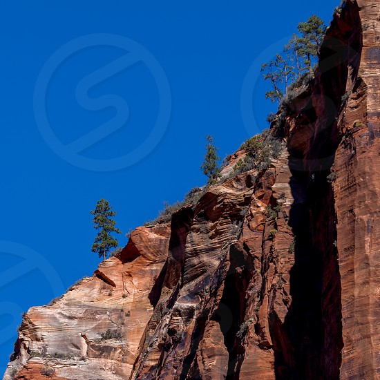 Red mountain in Zion National Park in Utah photo