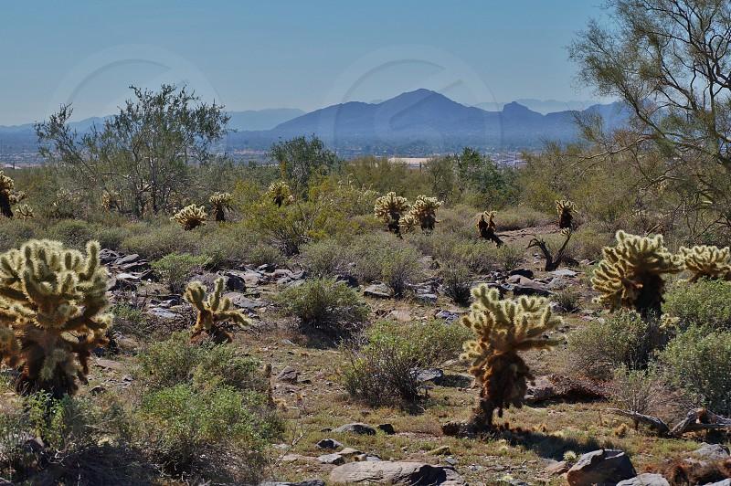 Camelback Mountain - Phoenix AZ photo