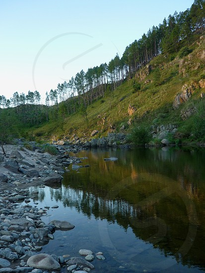 forest reflected in a natural river next mountains photo
