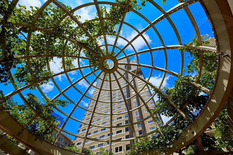 Boston skyscrapers from Norman Leventhal Park plants dome in Massachusetts USA photo