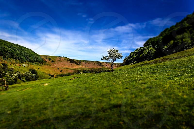 Landscape devils punchbowl tree field hill photo