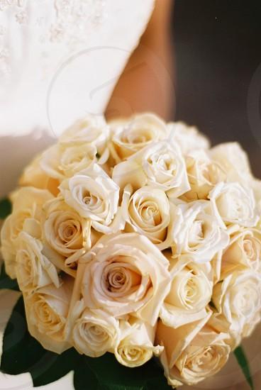 white roses wedding bouquet photo