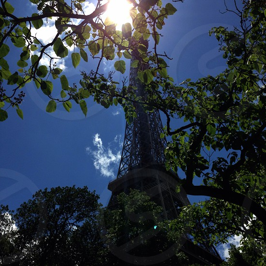 Chasing Light LisAm Sun Light Tower Symbol Architectural Paris France Tree Blue Sky Clouds Branches photo
