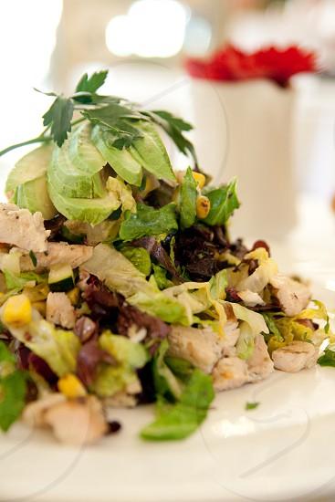 Cobb Salad at upscale Santa Barbara CA restaurant Stella Mare photo
