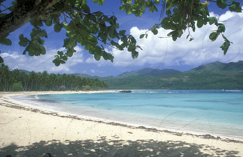 a Beach at the Village of Las Terrenas on Samanaon in The Dominican Republic in the Caribbean Sea in Latin America. photo