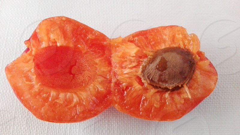 orange fruit with brown seed photo