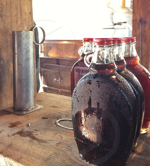 Making Maple Syrup photo