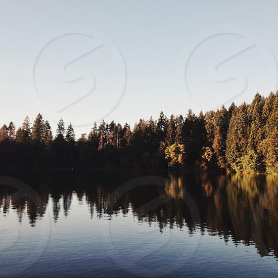 Fall reflection photo