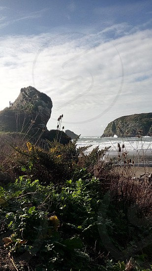 Trails at Harris Beach State Park Brookings Oregon. photo