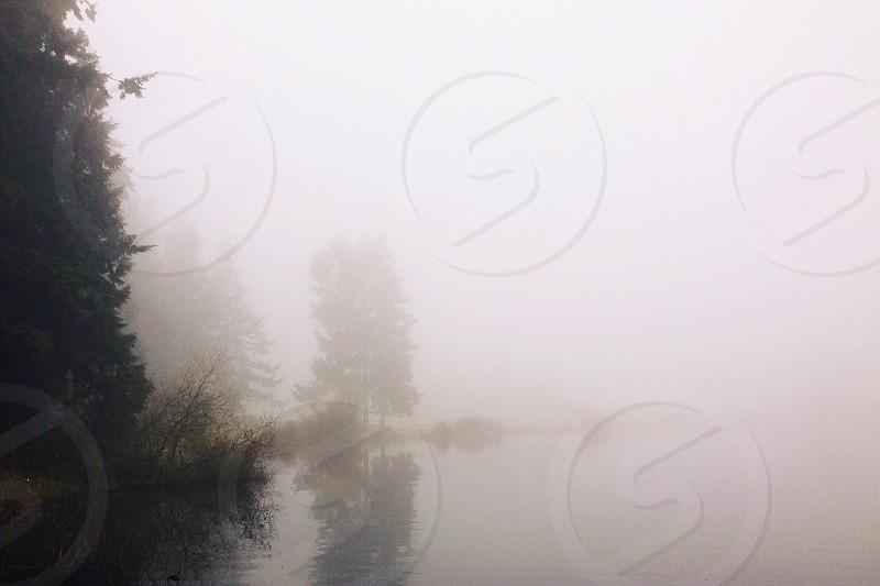 Lost. Mist.  photo
