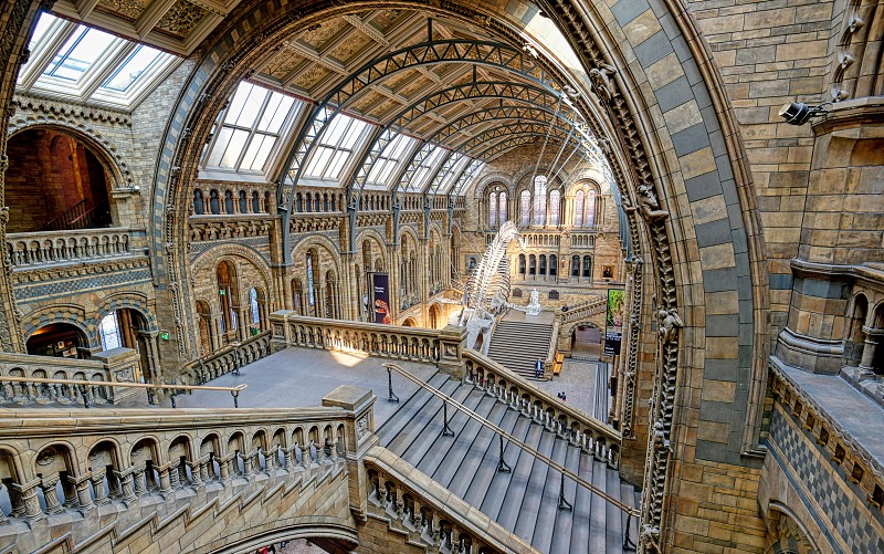 London United Kingdom - April 17 2019 - The interior of Natural History Museum and and whale skeleton in London United Kingdom. photo