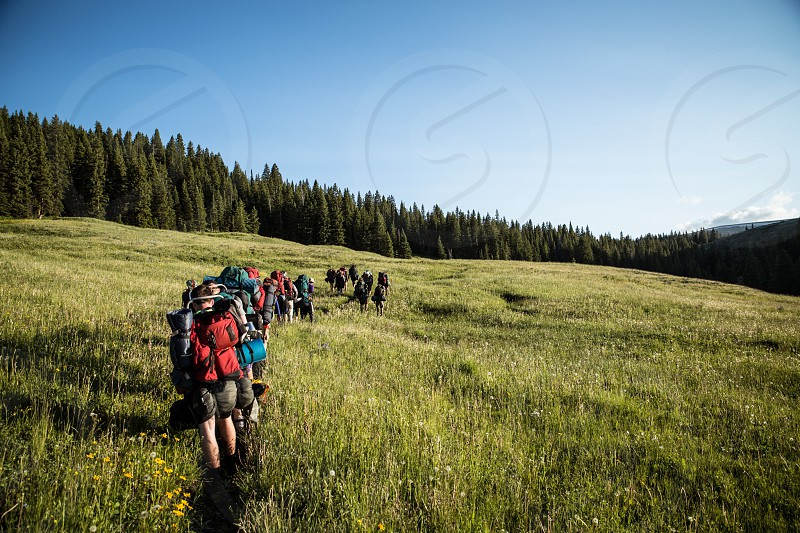 people walking on green forest nature photography photo