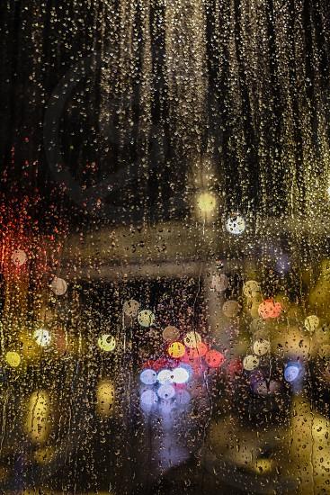 water droplets macro photography photo