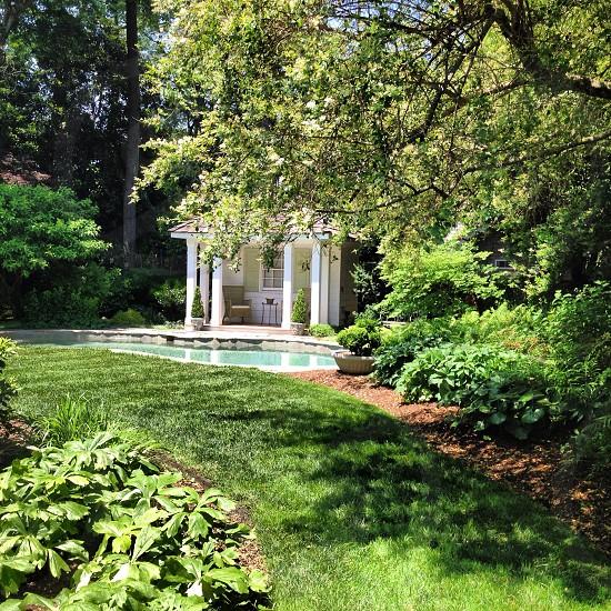 Backyard landscape  photo