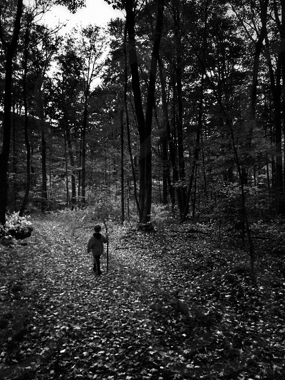 person wearing jacket in the forest photo