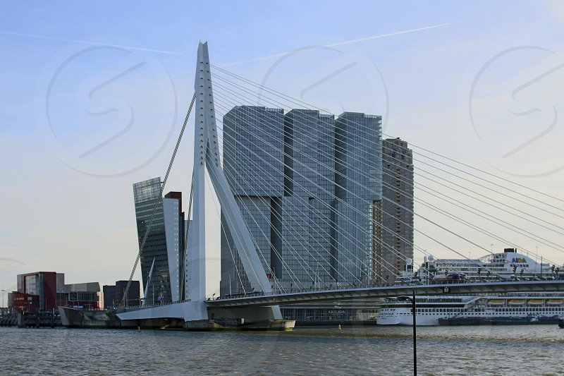 Erasmusbrug in Rotterdam viewed from the west bank of the river Meuse with highrises in the background dominating the Rotterdam sky line. photo