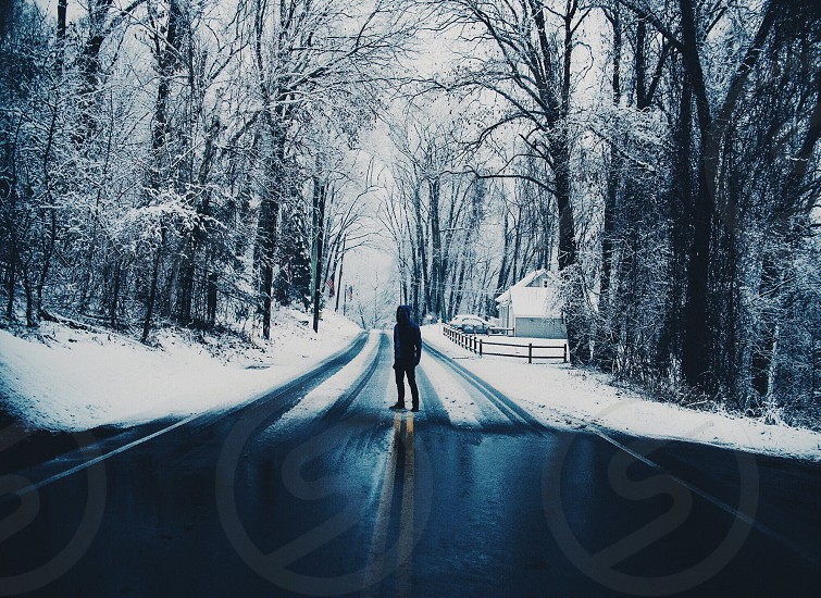 person in the middle of the road between snow covered tall trees photo