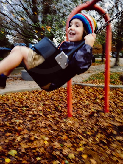 fall swing photo