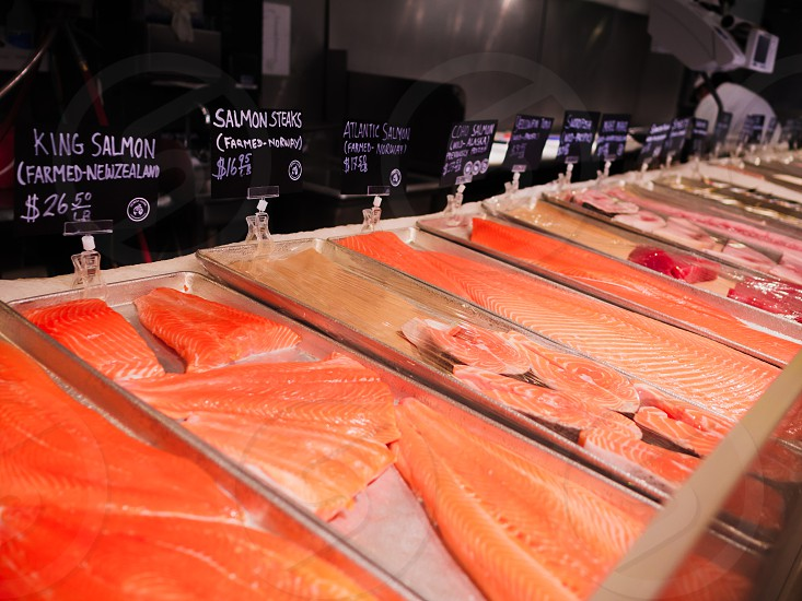 Large pieces of salmon for sale displayed inside of a seafood market. photo