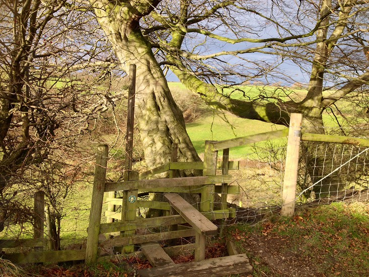 Over the stile  photo