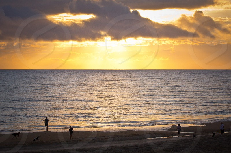 silhouette of people walking near the seashore during sunset photo