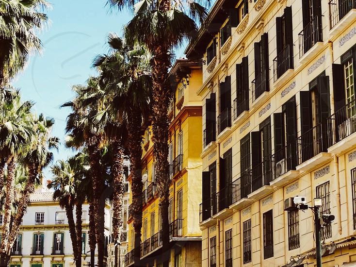 Marbella Spain photo