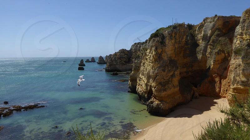 Oceanview photo