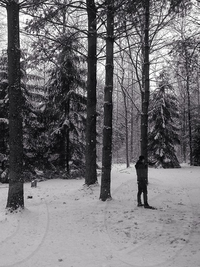 man in snow covered forest photography  photo