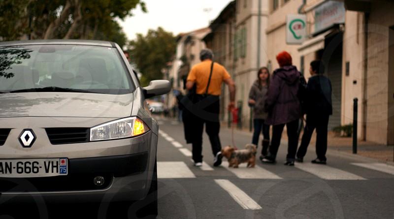 French Life. photo
