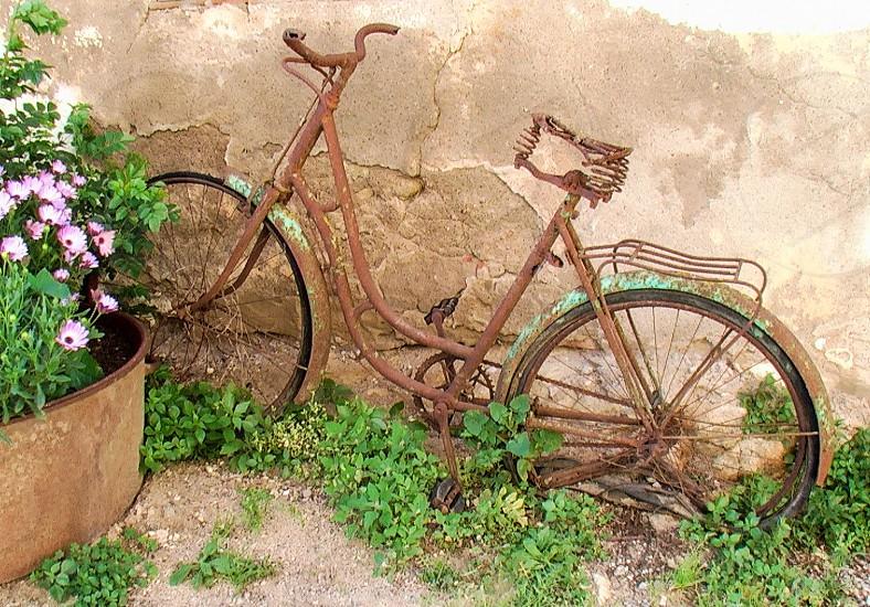 old bike  bicycle bicicleta bicicleta antigua bicicleta abandonada   photo