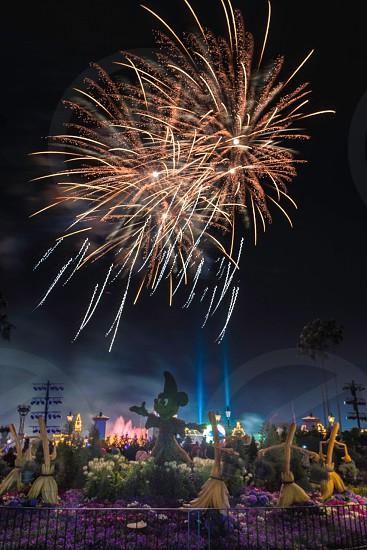 Disneyland at night photo