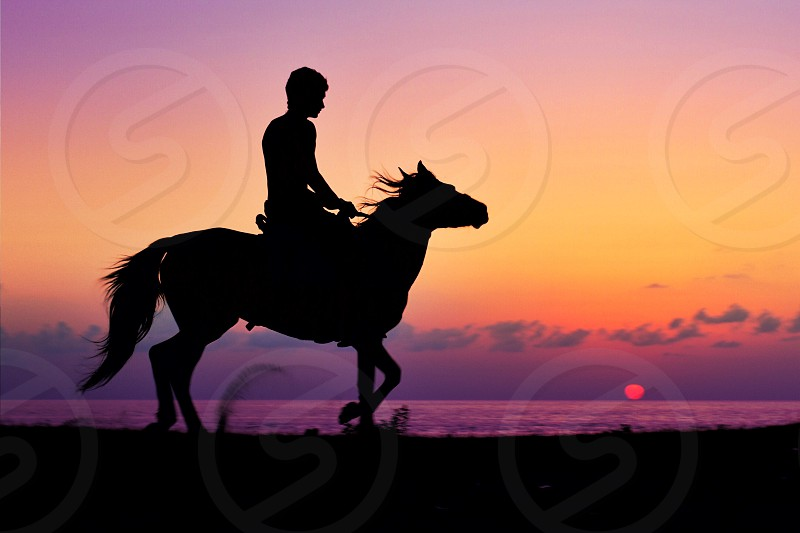 silhouette of man riding on horse beside sea under orange sky during daytime photo
