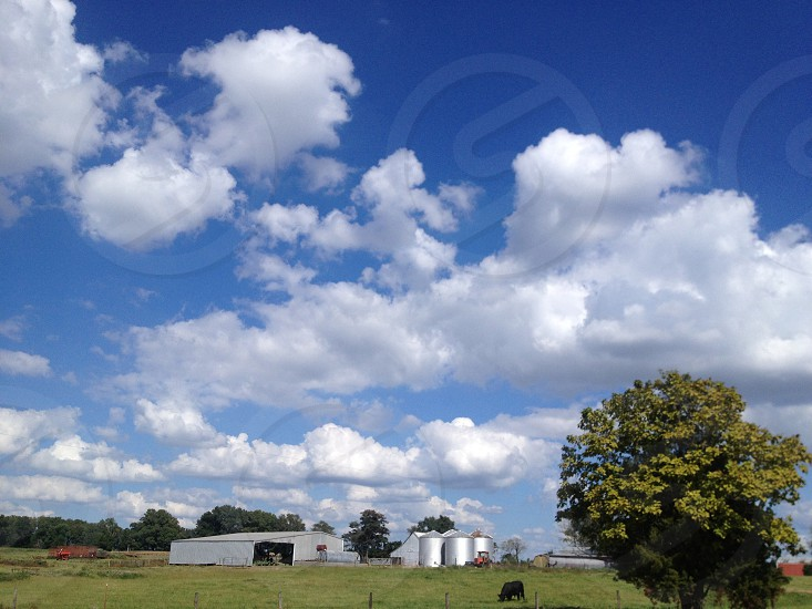 skyview photo