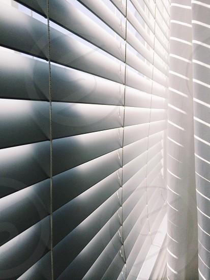 white venetian blings photo