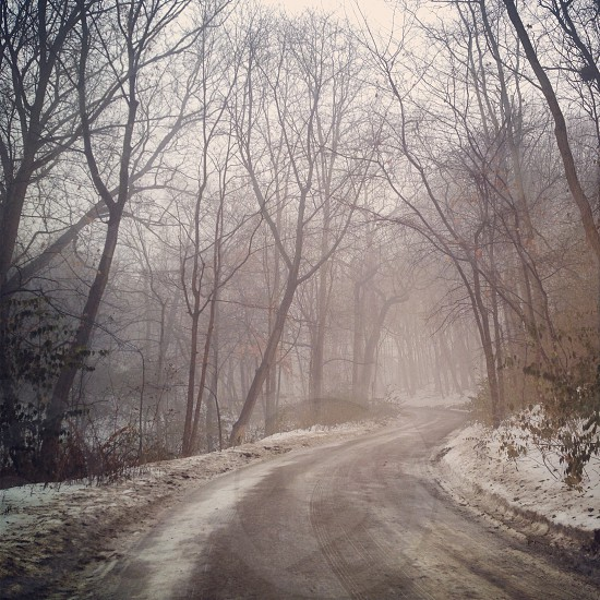A long and winding road Michigan in wintertime  photo