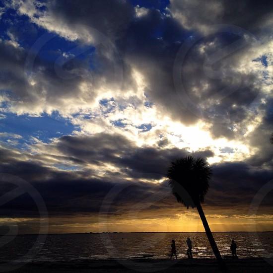 Tampa FL photo