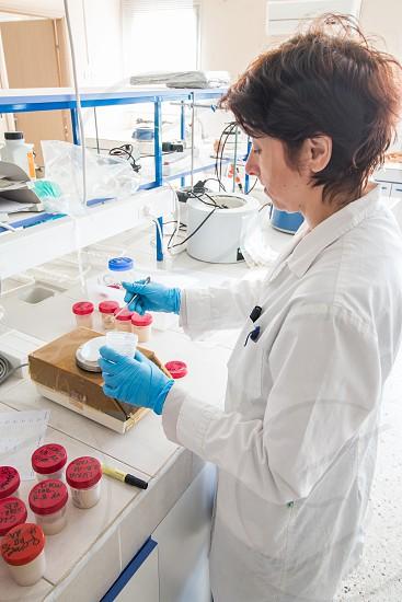 Female Scientific Researcher In Chemical Lab photo