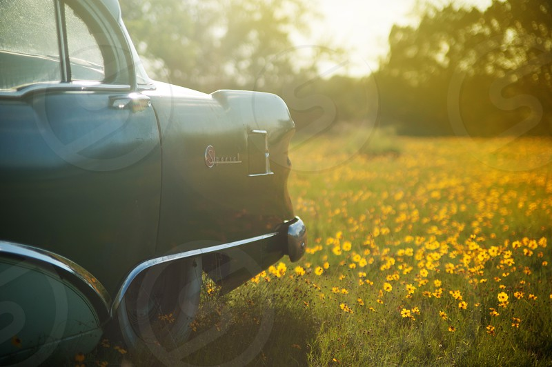 old rustic vintage buick car classic flowers farm field glow nostalgic memories dreamy happy sunset sun light golden sheer drama photo