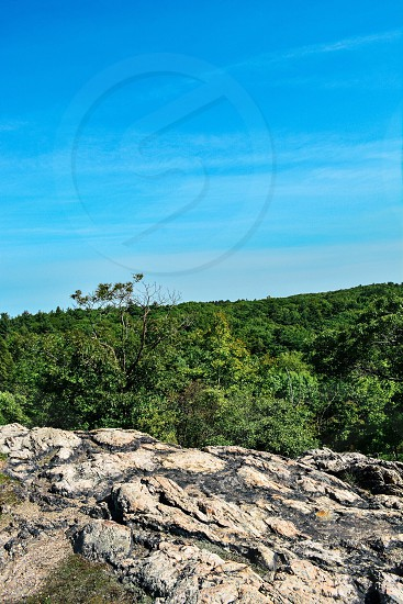 rock cliff with green treees photo