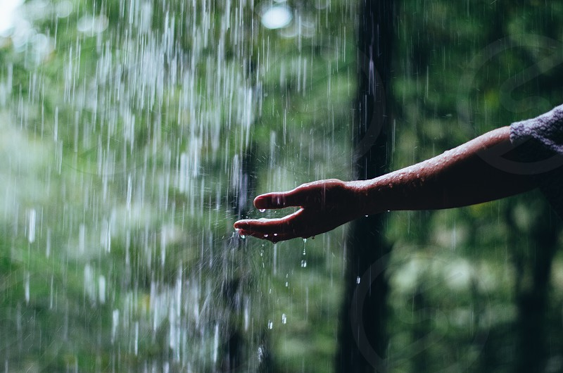 Waterfallwaterhanddrinkclearwoodgreen photo