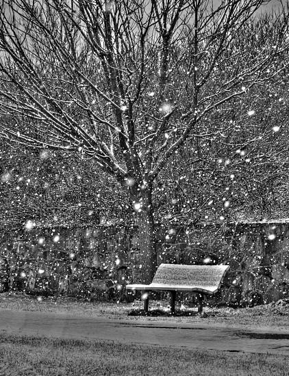 Portland Headlight winter storm.  photo
